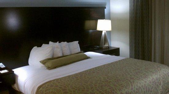 Staybridge Suites Bowling Green: King suite