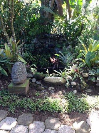 El Encanto Inn : il giardino