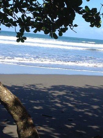 El Encanto Inn: alta immagine dell'oceano