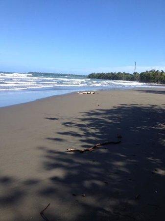 El Encanto Inn: la plaja immensa e selvaggia