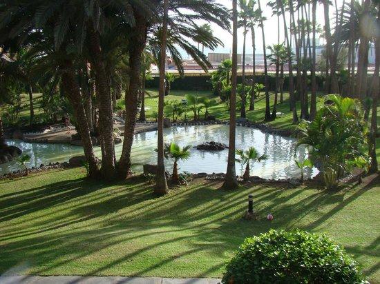 Hotel Riu Palace Oasis : vue de la chambre