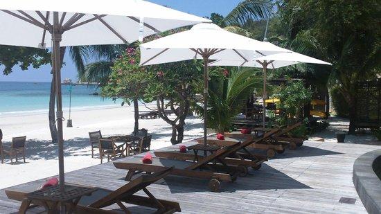 Paradee Resort & Spa Hotel : Piscine et plage