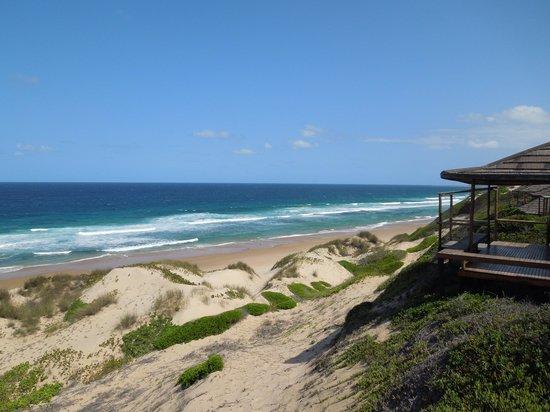 Blue Footprints Eco-Lodge : view of my casita