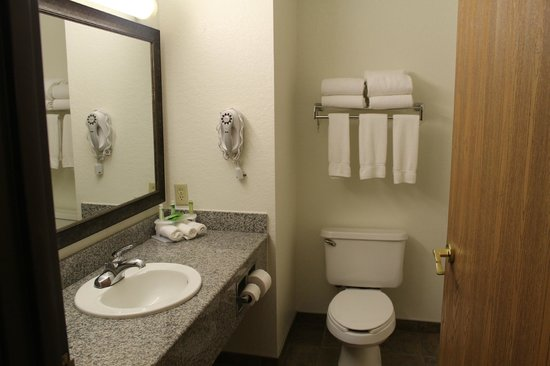 Holiday Inn Express Hotel & Suites Hill City : bathroom