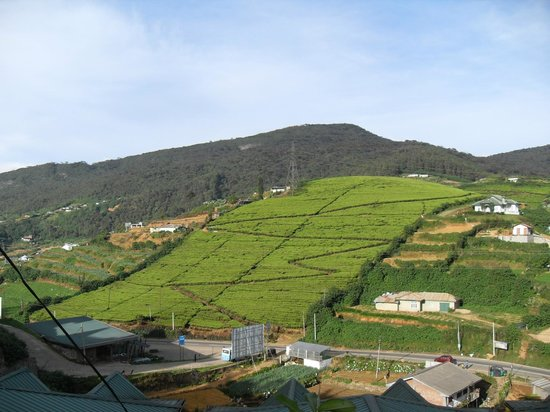 Hotel Tea Hills: The View Across Top Pass