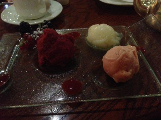 Roganstown Hotel and Country Club: Sorbet but not worth €8 in bar