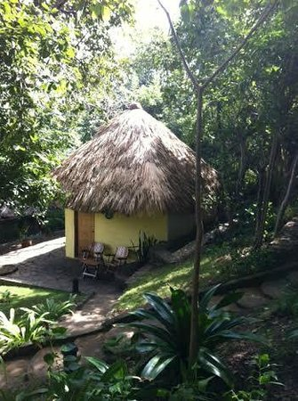 San Simian Eco Lodge : Pina