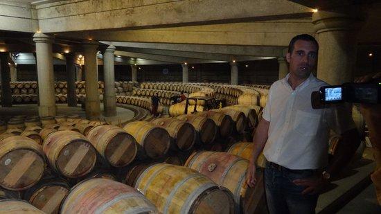 BD Tours: Wine Tours In Bordeaux : Barrel room at Lafite