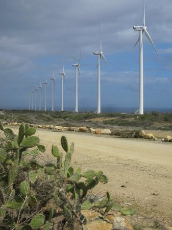 Savaneta, Aruba: Aruba's 30-megawatt wind farm, north of San Nicolas