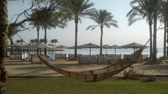 Continental Hotel Hurghada: пляж