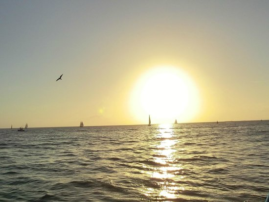 Fury Water Adventures Key West : the sunset cruise