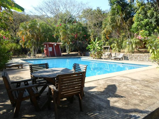Arca de Noe Bed & Breakfast: swimmin pool