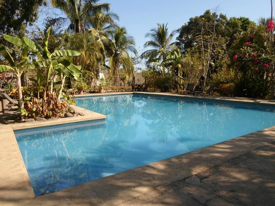 Arca de Noe Bed & Breakfast : swimming pool