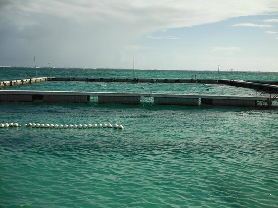 Dolphin Island: The furthest one is the dolphin pen that 48-50 people go in