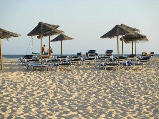 Hotel Oasis Belorizonte : solstolar vid stranden - gratis
