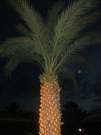Hotel Oasis Belorizonte : fint på natten