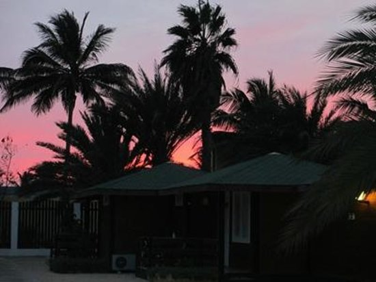 Hotel Oasis Belorizonte : rosa natt