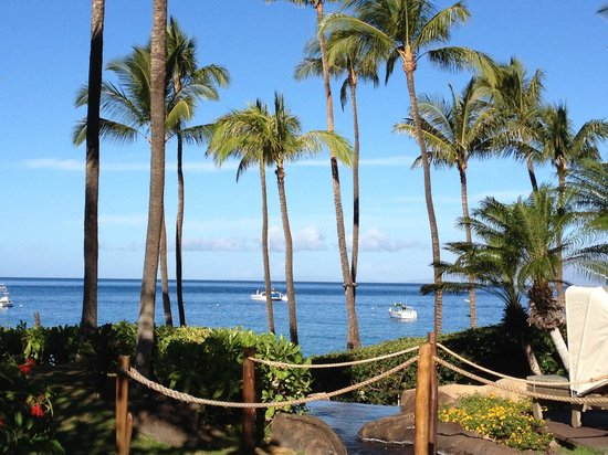 The Westin Maui Resort & Spa : Pacific view from adult pool