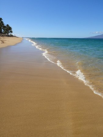 The Westin Maui Resort & Spa: Kaanapali Beach