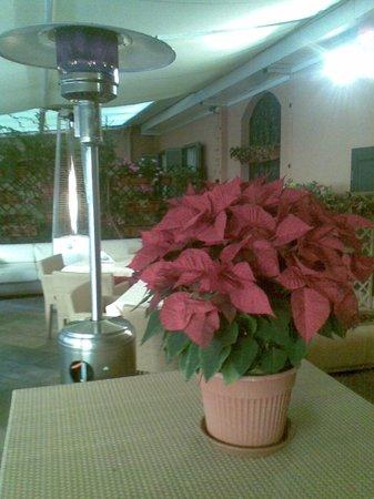 Hotel San Carlo : ROOF GARDEN
