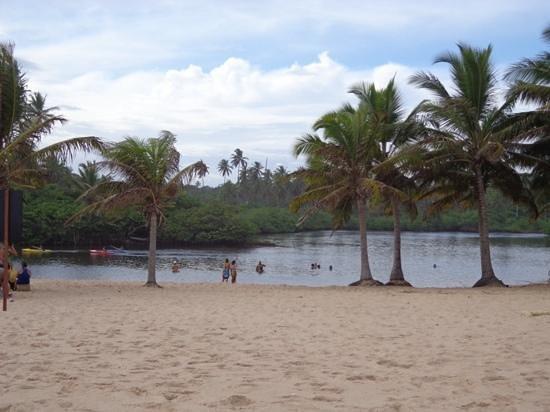 Imbassai Beach: rio imbassai