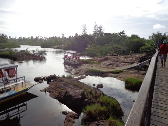 Imbassai Beach: pont imbassai