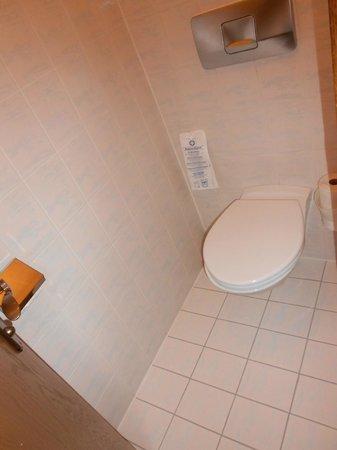 Dolomitenhotel: WC
