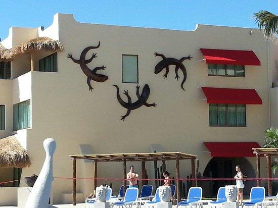Royal Decameron Los Cabos: Gecko
