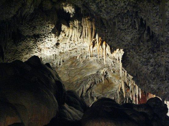 Jewel Cave National Monument: Jewel Cave