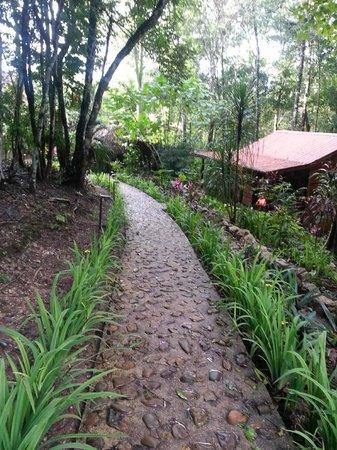 Table Rock Jungle Lodge: Stone Walkways