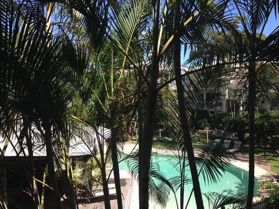 South Pacific Resort Noosa : View from room