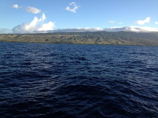 Molokai Fish & Dive Center: view of Molokai from the Coral Queen