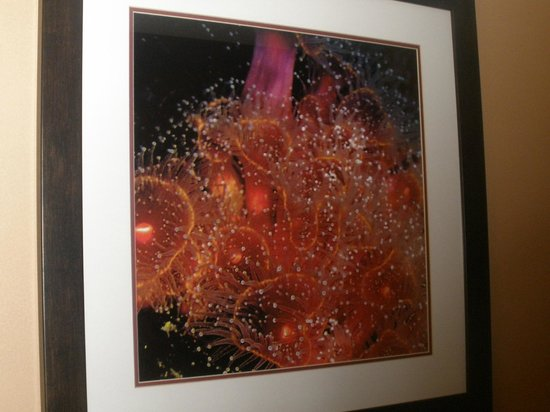 Mariposa Inn and Suites : artwork in the room