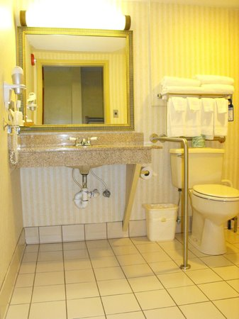 BEST WESTERN West Greenwich Inn: Accessible bathroom