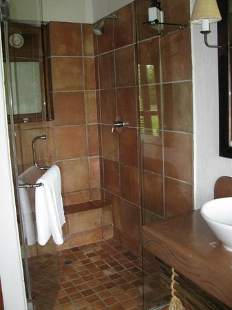 Kapama River Lodge: glassed in shower
