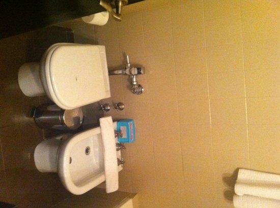 Rochester M: Banheiro bem limpo, com banheira