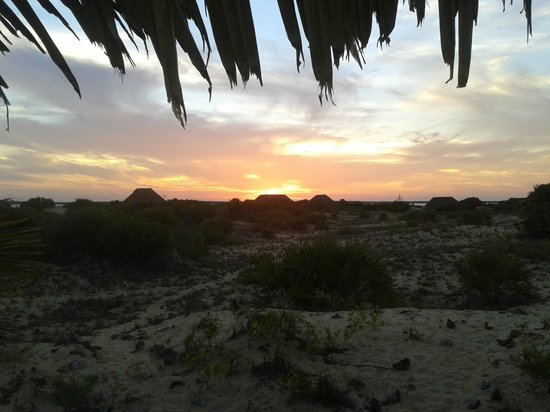 Kizingo: View from the banda set back in the dunes...