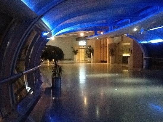 Radisson Blu Hotel, Manchester Airport: walkway entrance from Radisson Blu