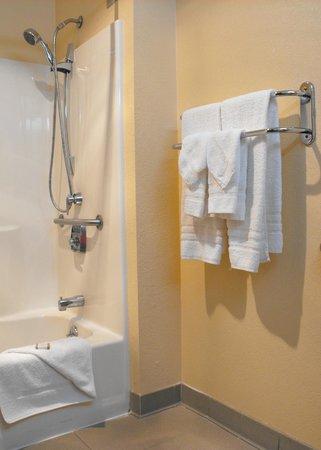 Baymont Inn & Suites East Windsor Bradley Airport: Room 115 - accessible bathroom