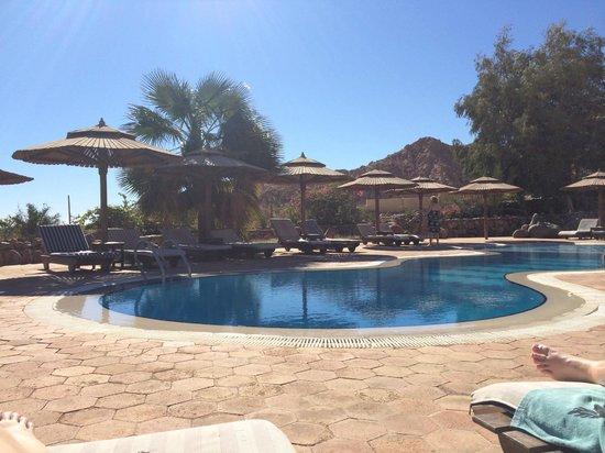 The Bedouin Moon Hotel: Pool