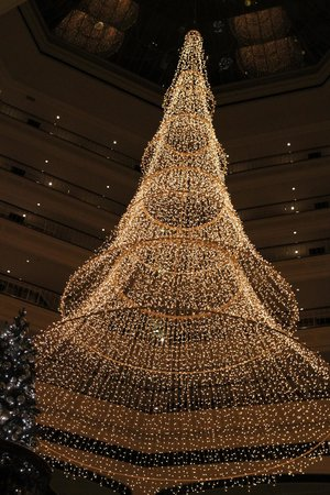 The Westin Grand Berlin: Wonderful Christmas Decorations