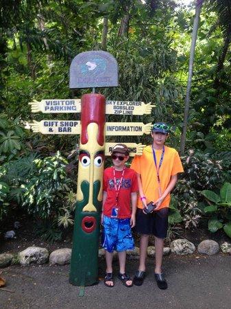 Rainforest Adventures Jamaica: Rainforest Bobsled Jamaica at Mystic Mountain