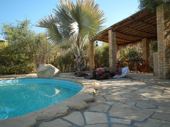 Arboretum d'Antsokay Bungalows: Great pool and for watching birds