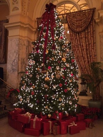 Hermitage Hotel: Christmas tree in the lobby