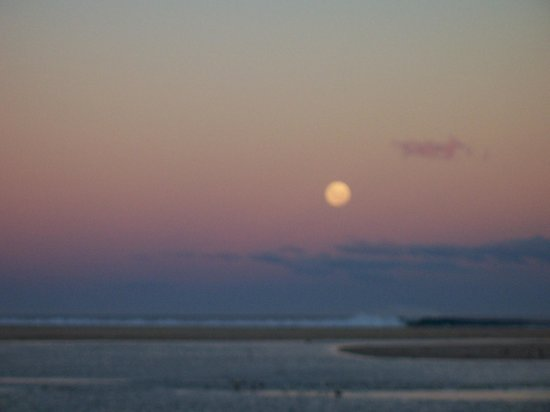 Pelican Sands Scamander : Full moon over the beach at the front of the property
