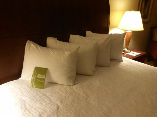 Hilton Garden Inn Bangor: comfy bed, tight linen!