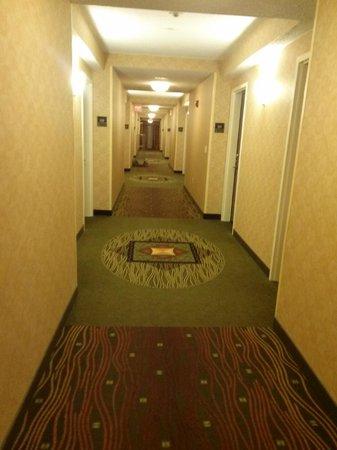 Hilton Garden Inn Bangor: hallway