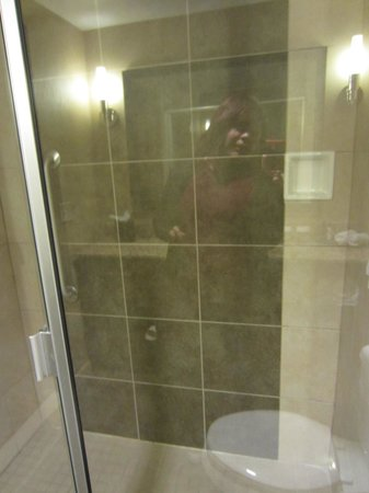 Embassy Suites by Hilton Houston - Energy Corridor : shower very roomy