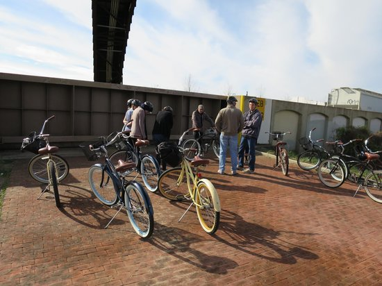 Confederacy of Cruisers Bike Tours: the levee