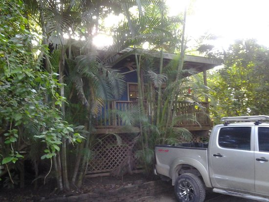 Georphi's Tropical Hideaway: our cabin...#2,private bathroom, king bed, full bed and a trundle...slept 4 of us comfortably, a